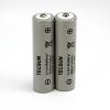 Tecsun S-8800 Batteries